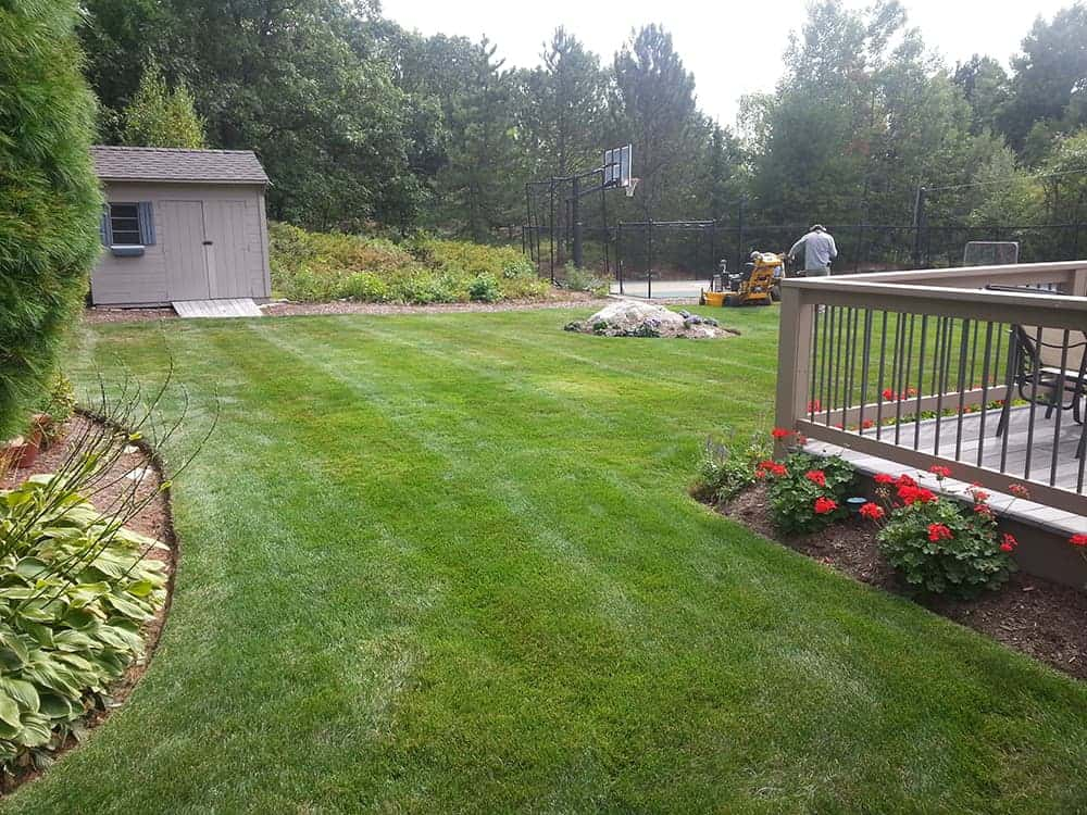 landscape maintenance steve 39 s services